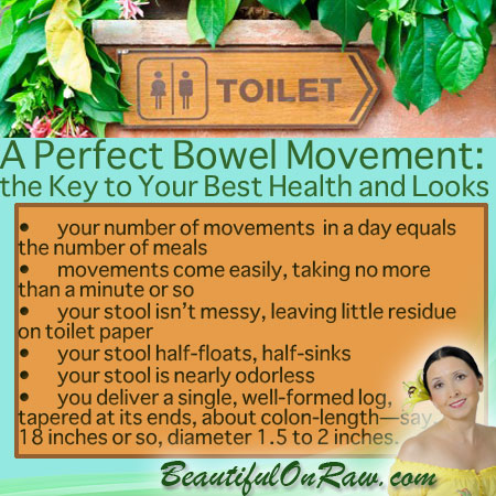 Perfect Bowel Movement