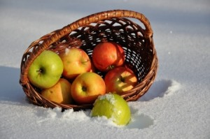 Apples on the snow